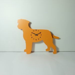 The Labrador Co.-Orange Border Terrier with wagging tail - last one!
